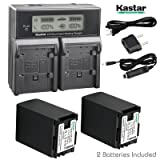 Kastar LCD Dual Fast Charger & 2 x Battery for Canon BP-827 and VIXIA HF G10, G20, M30, M31, M32, M40, M41, S10, S11, S20, S21, S30, S100, S200, HF20, HF21, HF100, HF100, HF200, HG20, HG21, XA10 (Tamaño: 2 batteries + 1 dual fast charger)