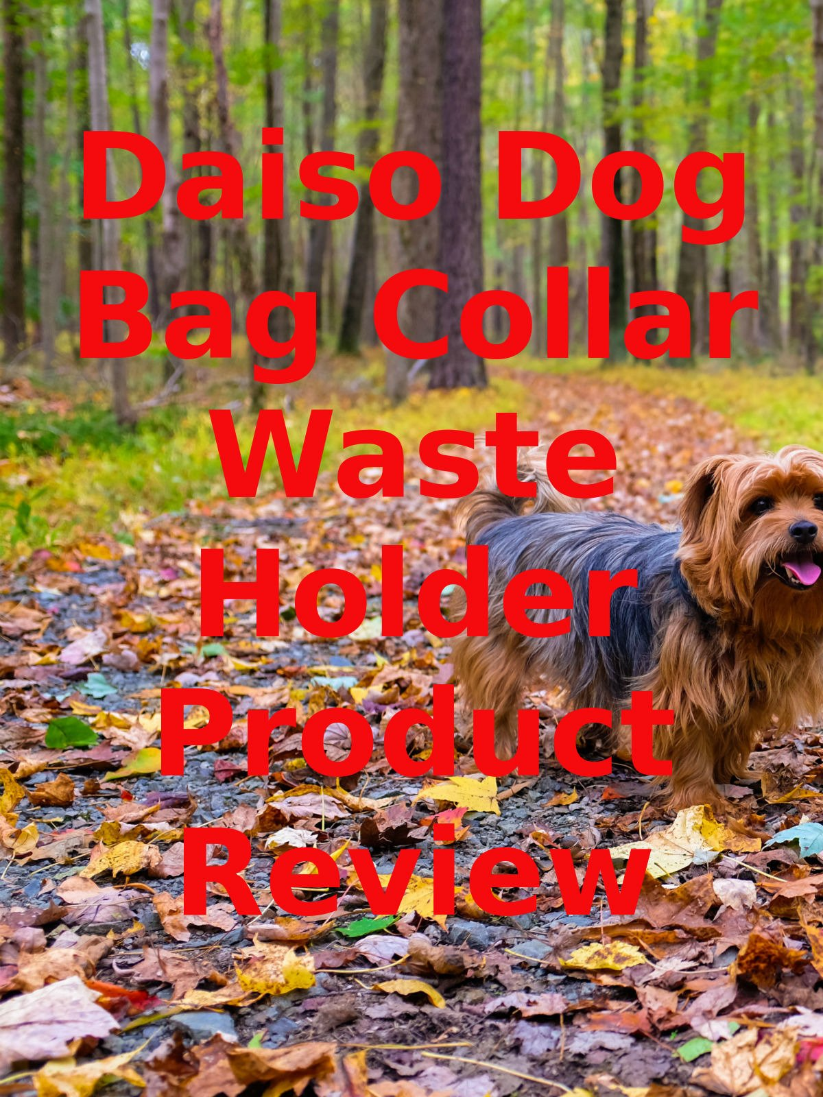 Review: Daiso Dog Bag Collar Waste Holder Product Review