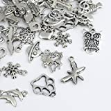 Naler Antique Silver Mixed Charms Pendants for DIY Jewelry Making and Crafting, 120 Pieces