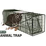 Extra Humane Large Live Animal Professional Heavy Duty One Door Raccoon, Groundhog, Opossum, Squirrel and Cat Trap - 32