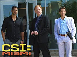 CSI: Miami, Season 10