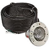 Pentair 77360300 Stainless Steel AquaLight Halogen Quartz Light 120-Volt 250-Watt, 100-Feet Cord