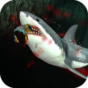 Shark from Studios Book