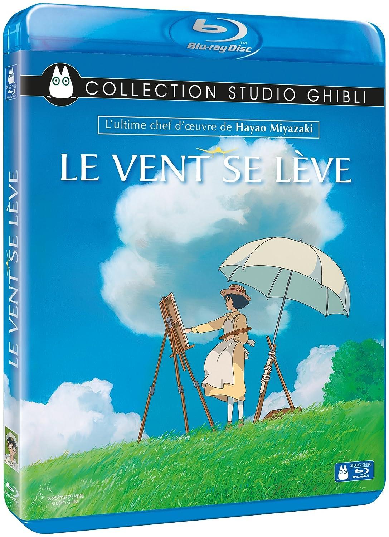 Telecharger Le Vent se lève FRENCH Blu-Ray 720p Gratuitement
