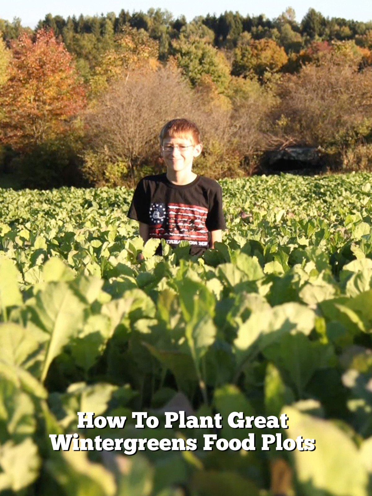 How To Plant Great Wintergreens Food Plots