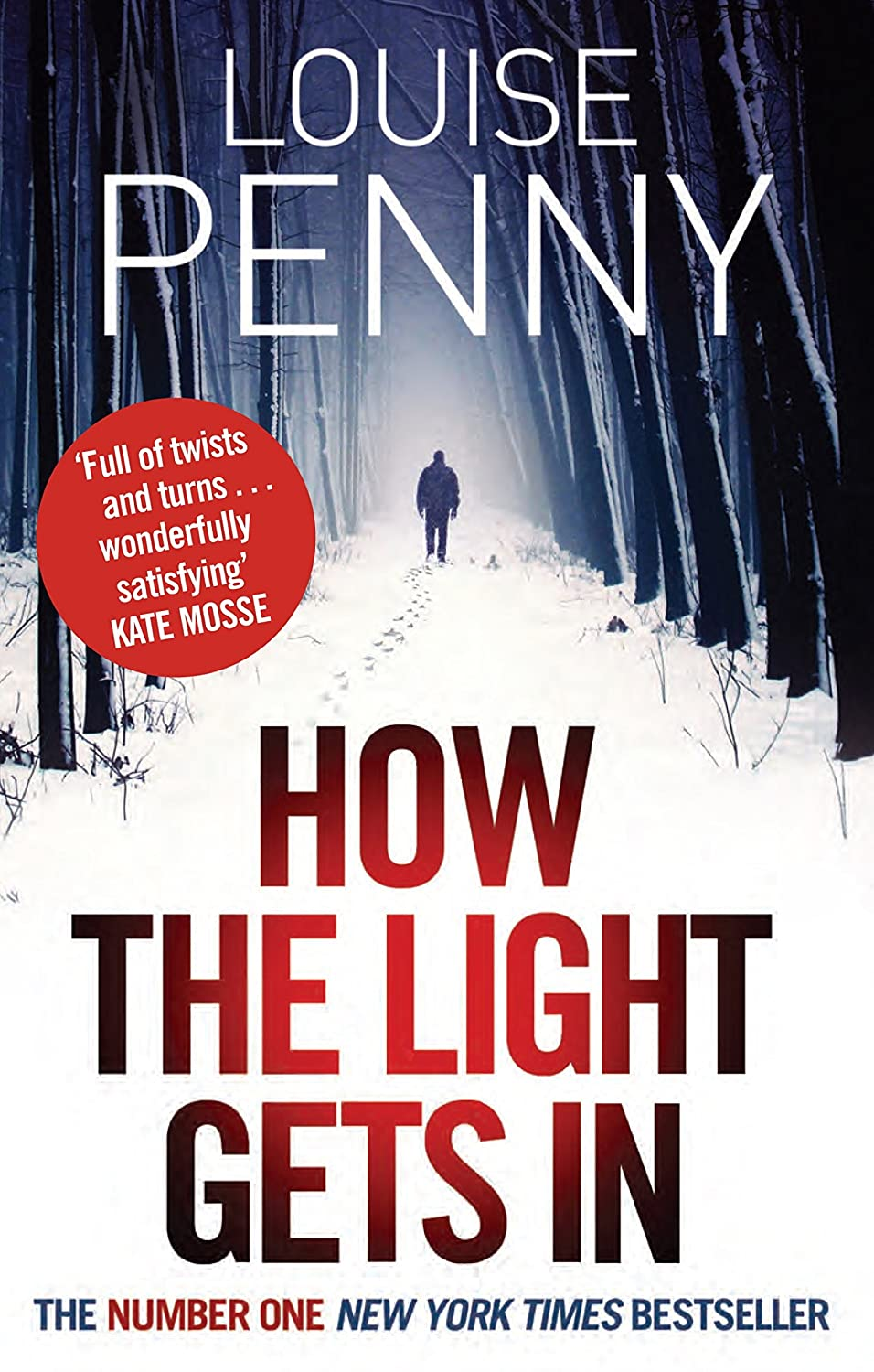 How The Light Gets In Book Cover