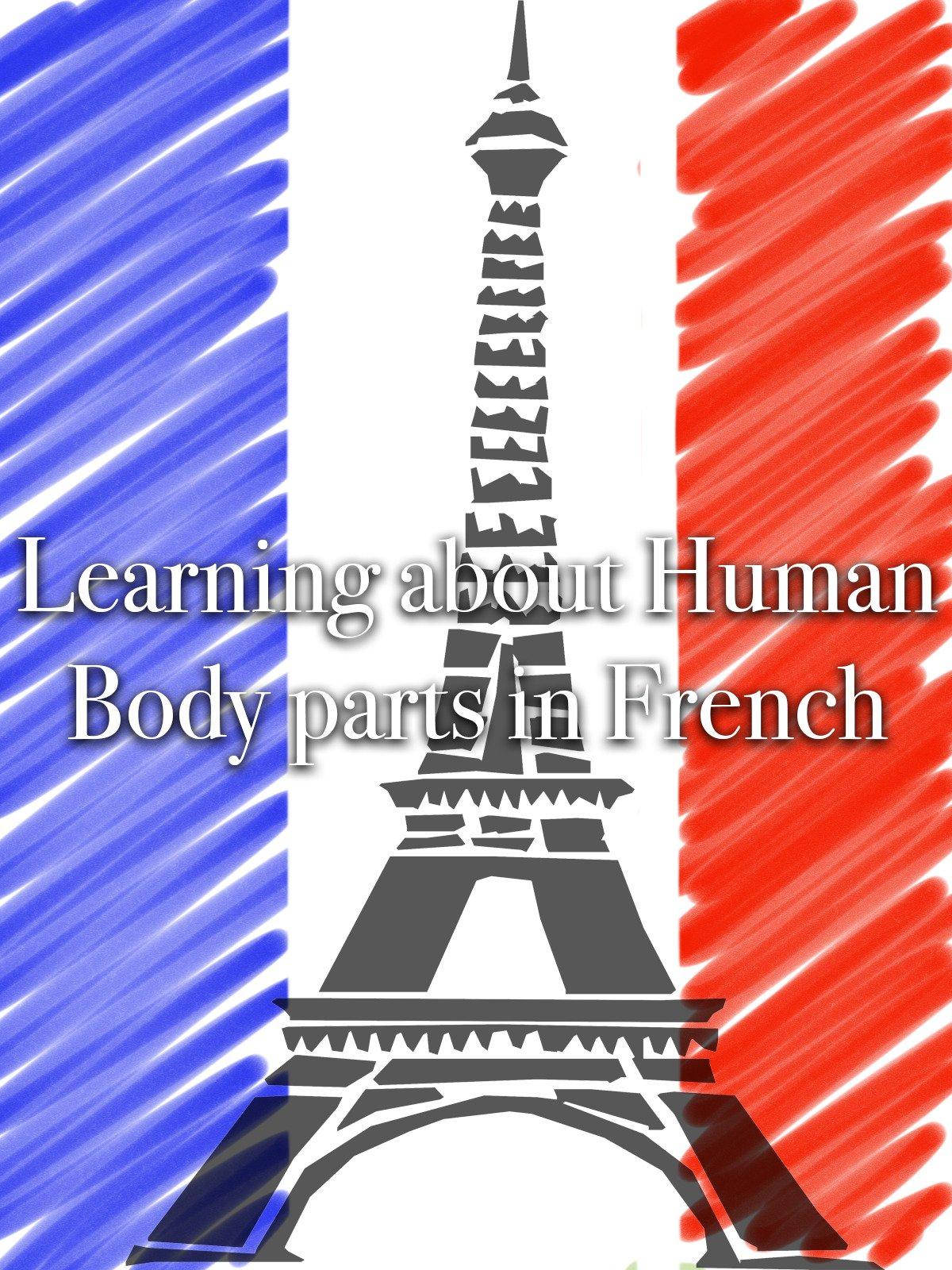 Learning about Human Body parts in French
