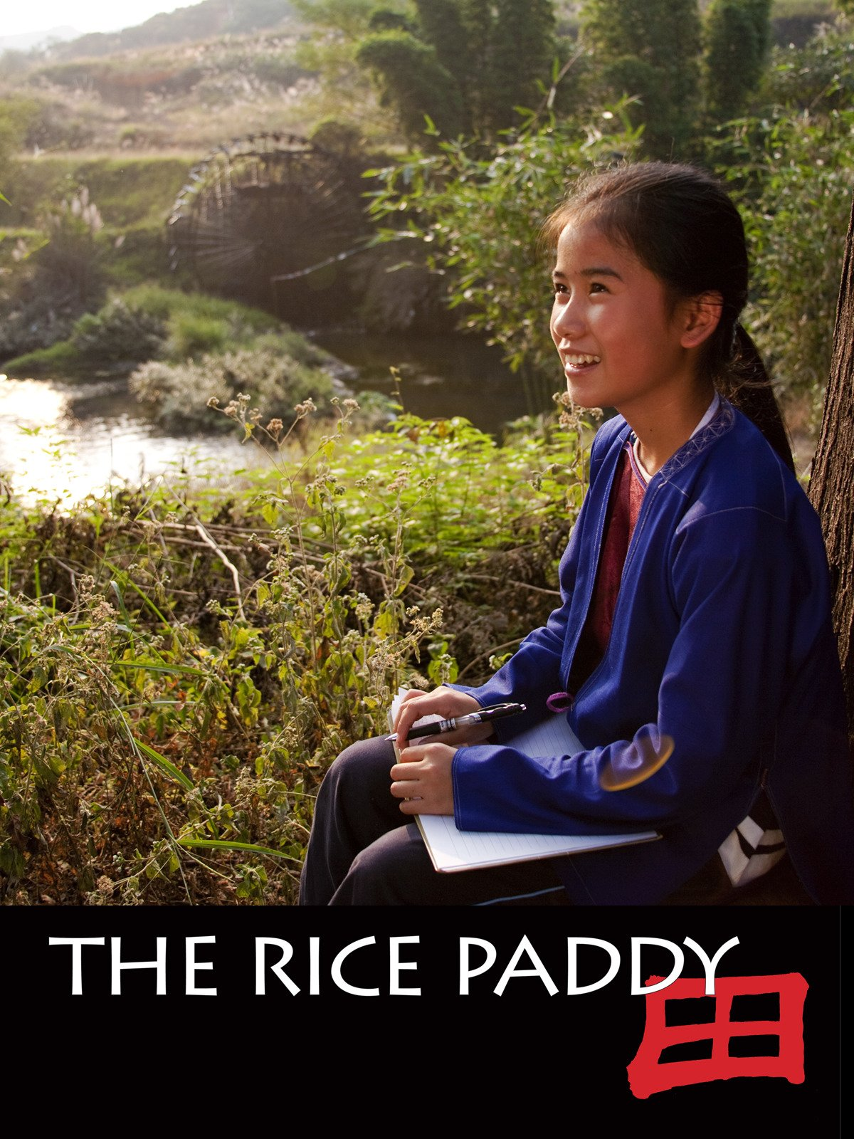 The Rice Paddy