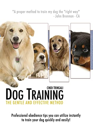 Learn dog obedience training