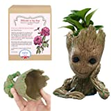 OnefunTech Groot Planter, Baby Groot Flower Pot Plant Pot Tree Man Pen Container Guardians of The Galaxy Action Figures (Color: Groot Planter)