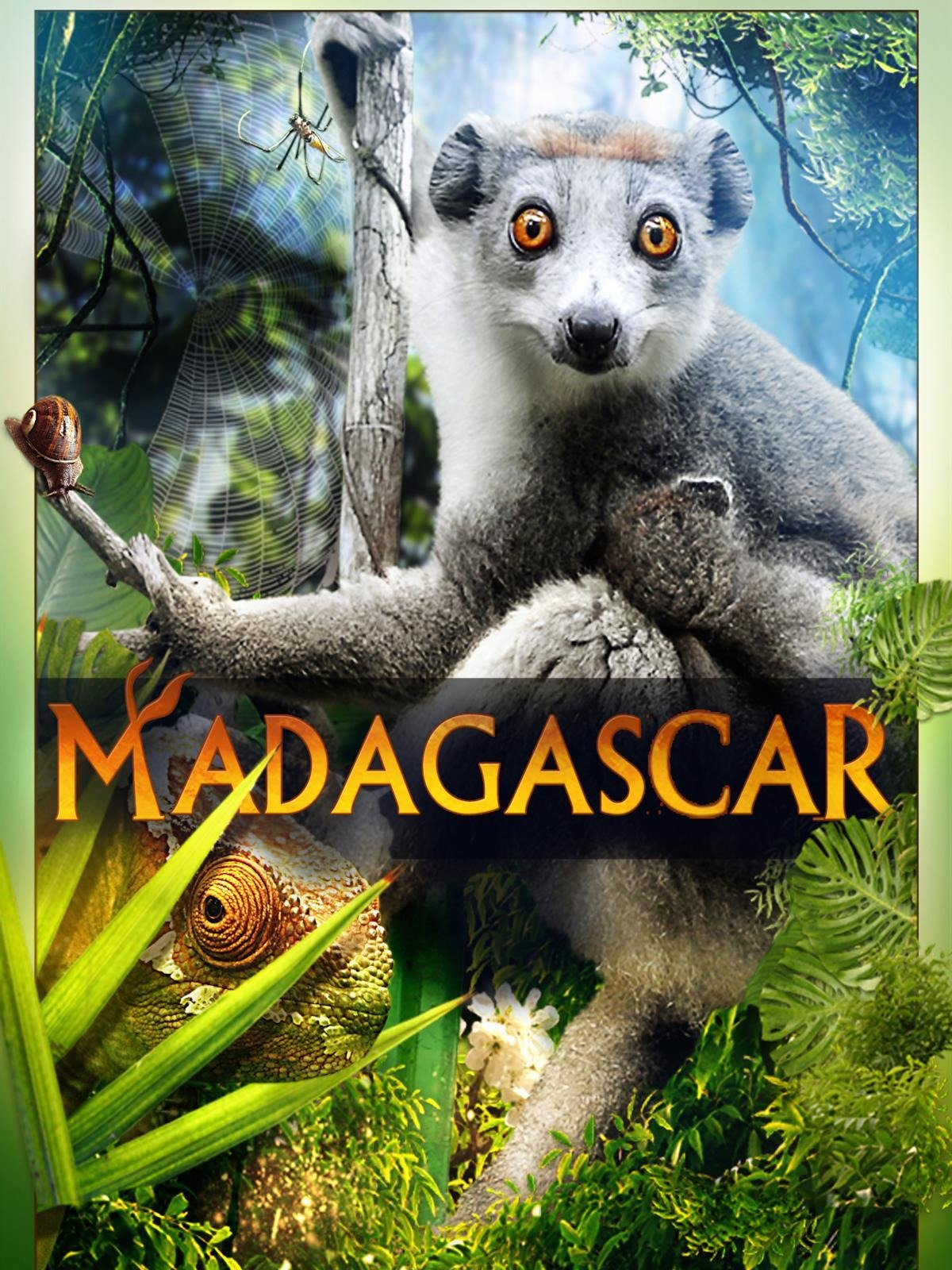 Madagascar (2D) on Amazon Prime Video UK