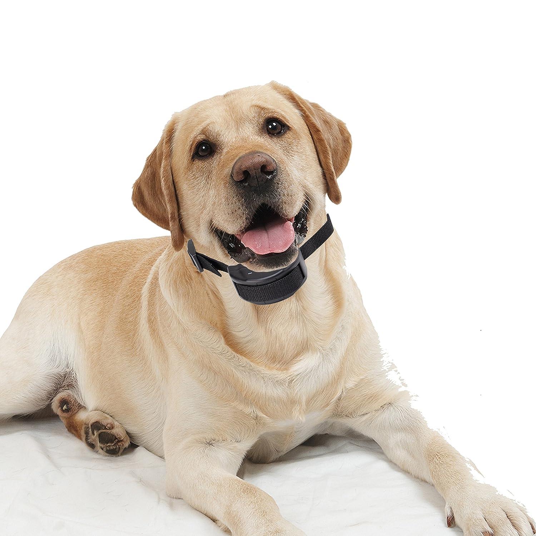 SySrion® No Bark Collar for Bark Control w/ 7 Levels Adjustable Sensitivity Control with Manual - Premium Electronic Anti-bark Pet Dog Bark Collar Training System for 15 ..