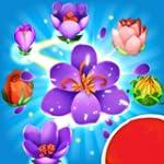 Blossom Blast Walkthrough