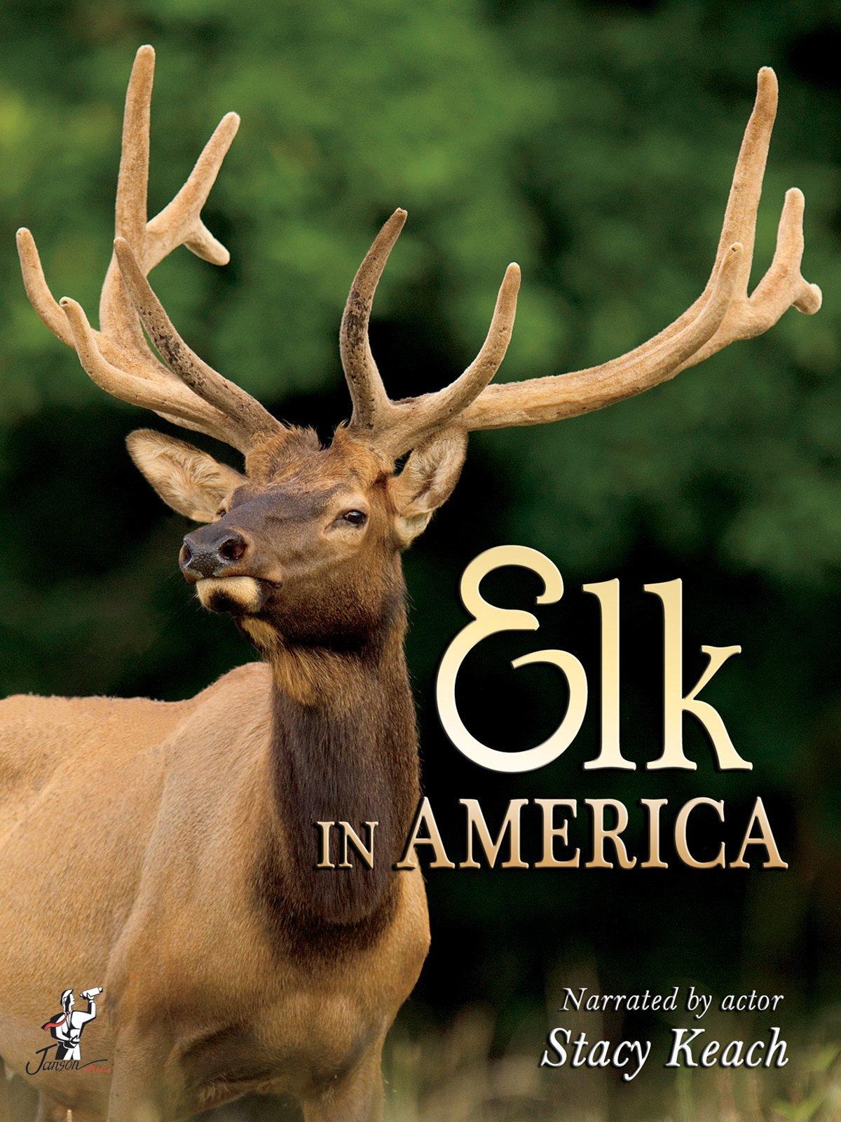 Elk in America on Amazon Prime Instant Video UK