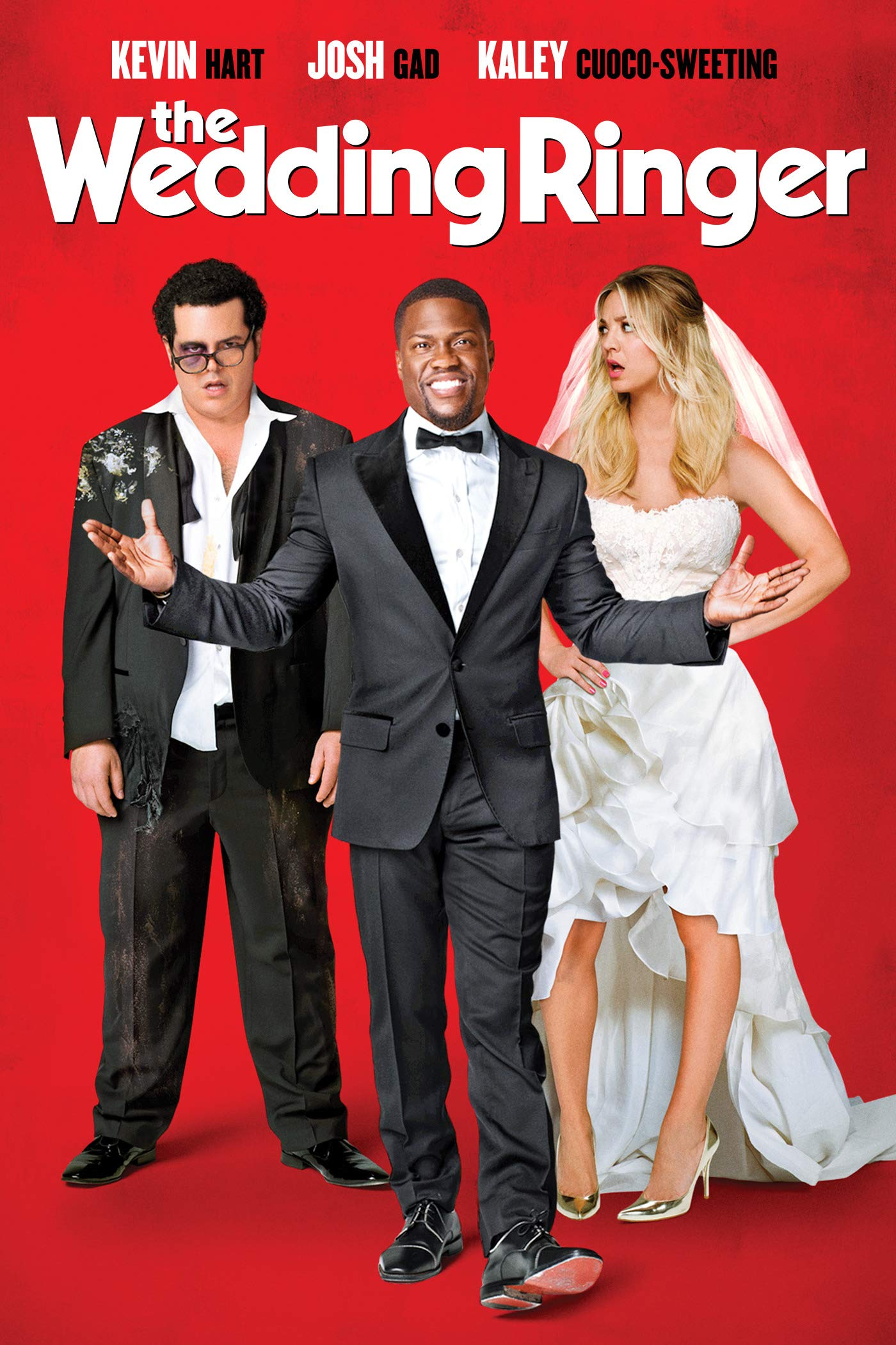 The Wedding Ringer on Amazon Prime Video UK