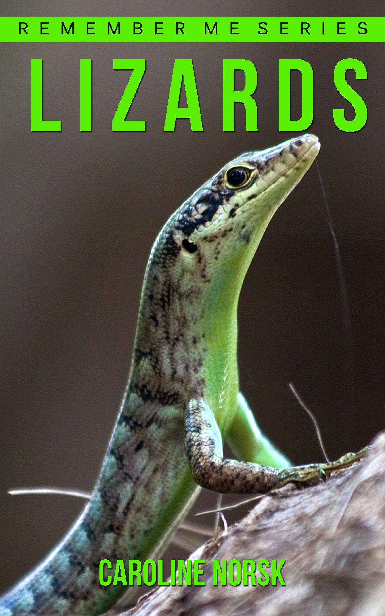 here lizard lizard essay