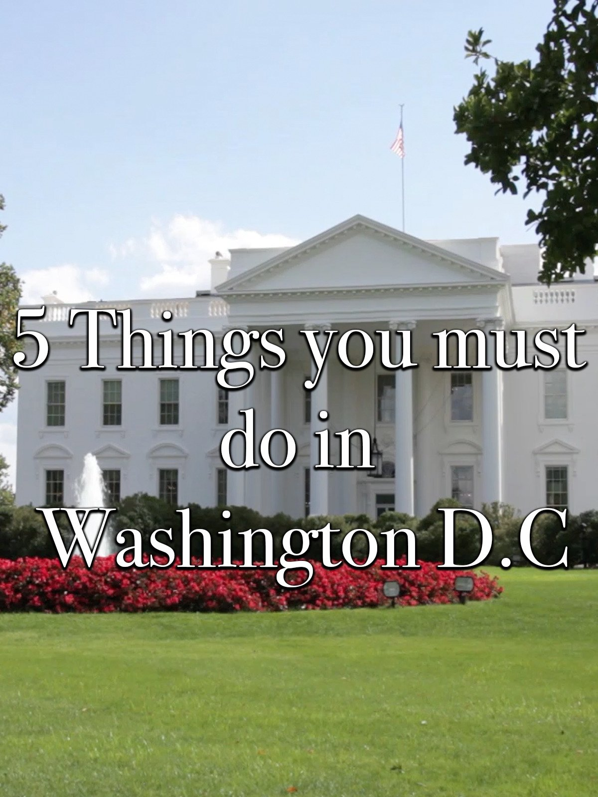 5 Things you must do in Washington D.C