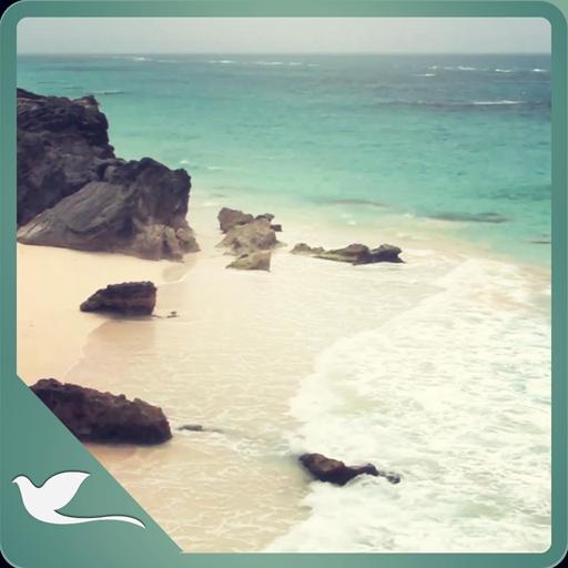 Along Beach Software