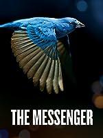 The Messenger [English]