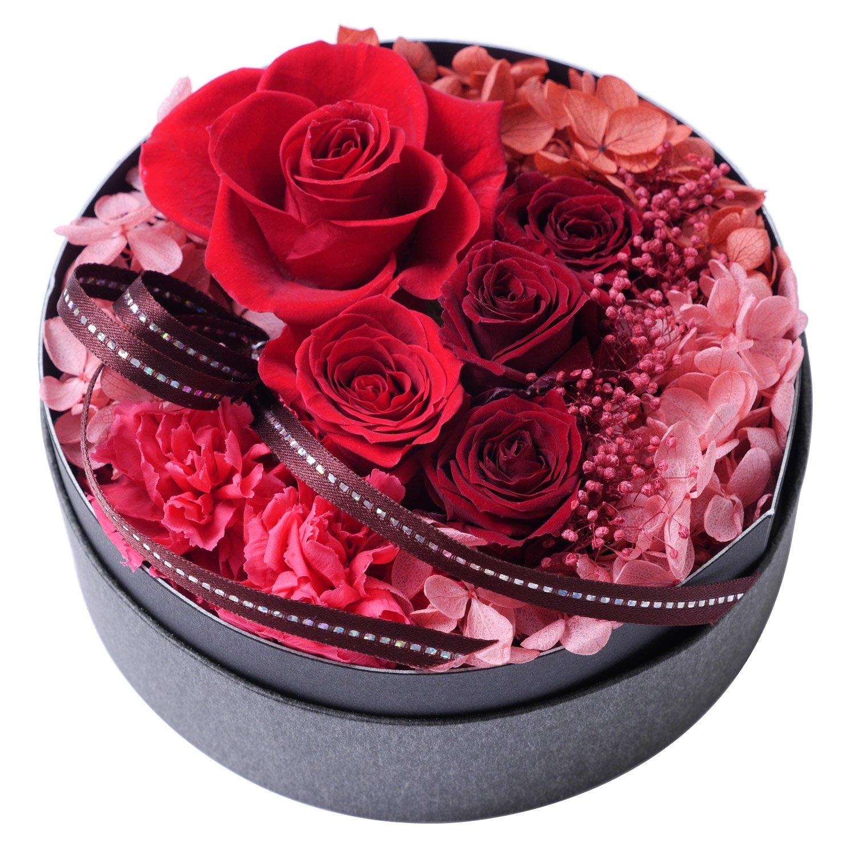 赤 カーネーション 花