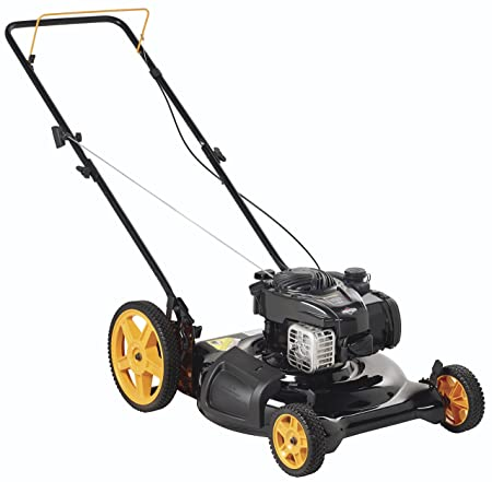 The 45 Best Lawn Mowers of 2019 - Family Living Today