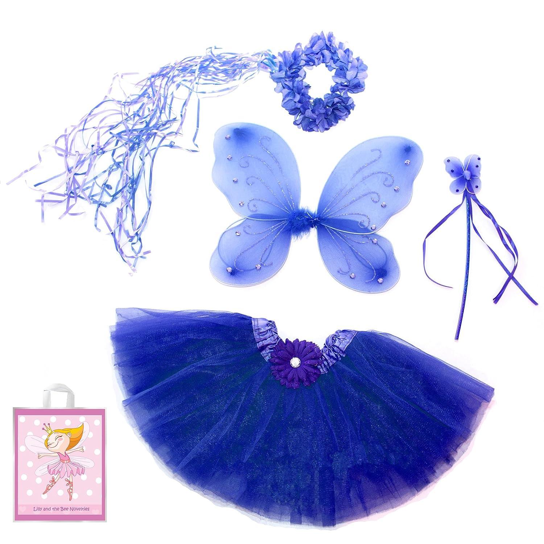 Fairy Princess Costume Set