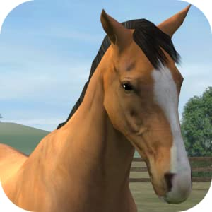 My Horse from NaturalMotion Games Limited