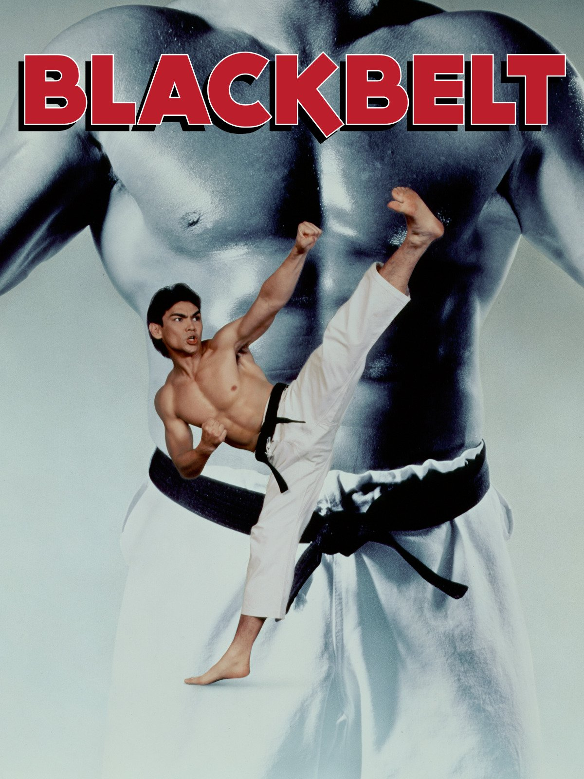 Blackbelt on Amazon Prime Instant Video UK