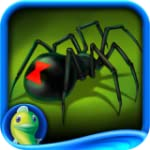 Web of Deceit: Black Widow Collector'...