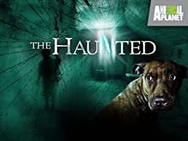 The Haunted Season 2