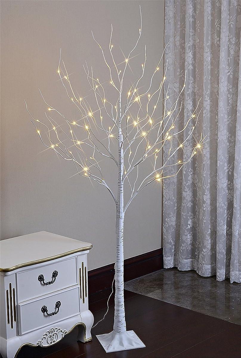 Lighted Birch Tree