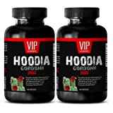 Fat loss energy pills - HOODIA GORDONII EXTRACT 2000 - Hoodia p57 slimming - 2 Bottles 120 Tablets