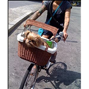 Bicycle Dog Carrier Reviews