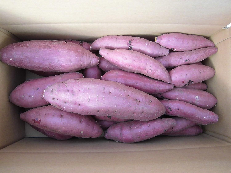 鹿児島県産 西山さんちの紅はるか ファミリーパック 酵素さつま芋