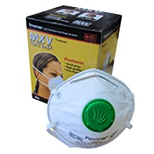 FASTCAP MXV 10PK Dust Masks, 10-Pack