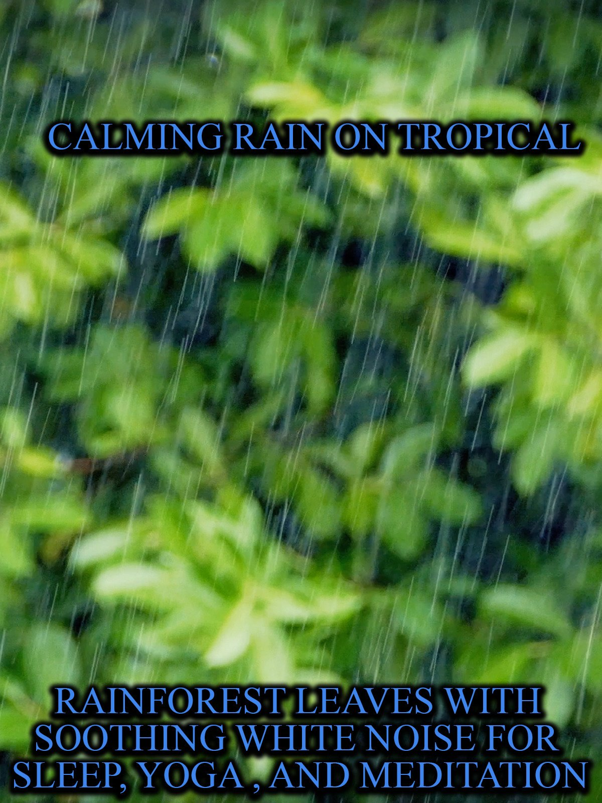 Calming Rain on Tropical Rainforest leaves with Soothing White Noise For Sleep, Yoga, and Meditation