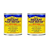Geocel 25200 Instant Roof Repair Brushable Coating, 1 qt, Clear (?wo ?ack) (Tamaño: ?wo ?ack)
