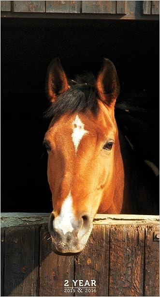 2015-2016 2 Year Horses Pocket Calendar