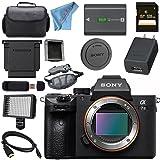 Sony ILCE7M3/B Alpha a7 III (A7M3) Mark 3 Mirrorless Digital Camera (Body Only) + 128GB SDXC Card + NP-FW50 Lithium Ion Battery + Professional 160 LED Video Light Studio Series Bundle (Tamaño: Body)