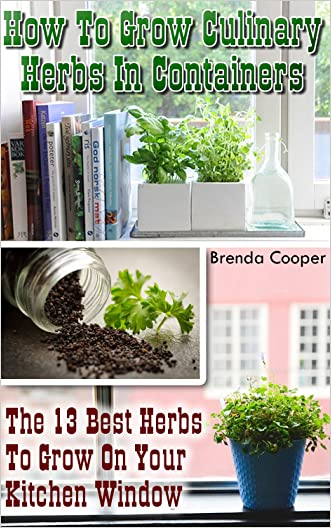 How To Grow Culinary Herbs In Containers: The 13 Best Herbs to Grow On Your Kitchen Window