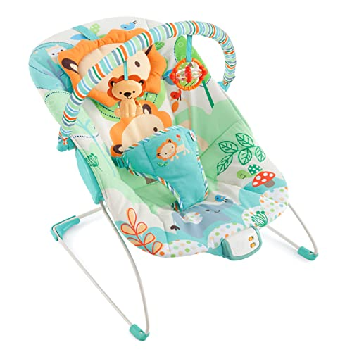 Playful Pals Baby Bouncer