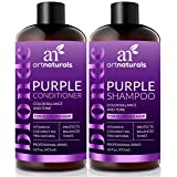 ArtNaturals - Color Balance and Tone Purple - Shampoo and Conditioner Set - (2x 16 Fl Oz 473ml) (Color: Purple, Tamaño: 2 * 16 Fl Oz / 473ml)