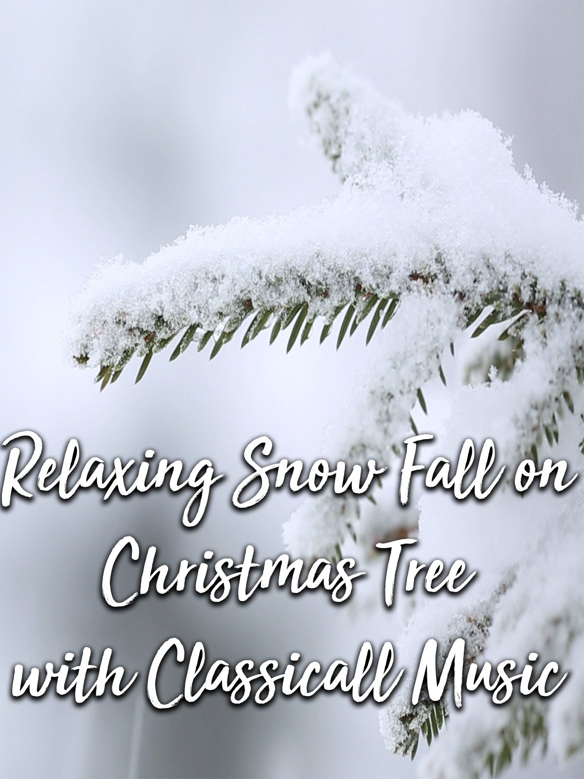 Relaxing Snow Fall on Christmas Tree with Classical Music