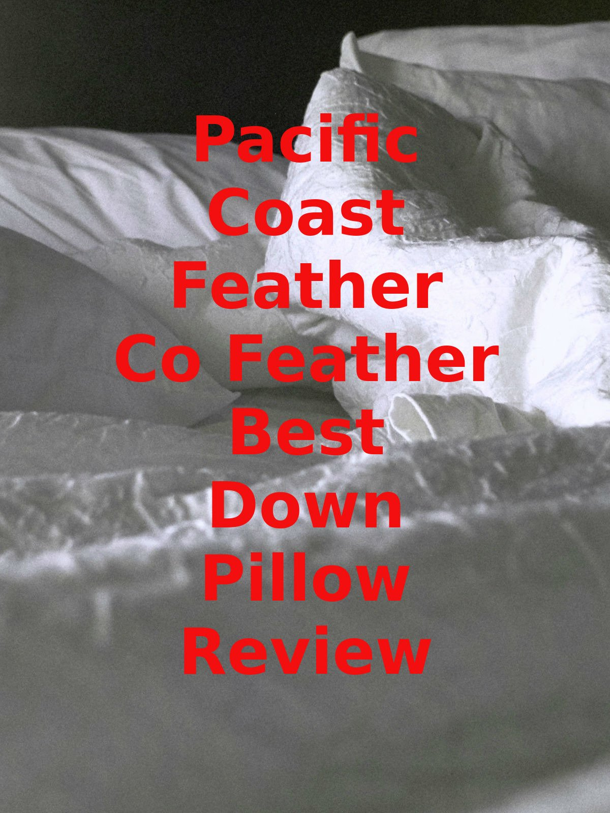 Review: Pacific Coast Feather Co Feather Best Down Pillow Review on Amazon Prime Instant Video UK