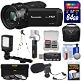 Panasonic HC-V800 Wi-Fi Full HD Video Camera Camcorder with 64GB Card + Battery & Charger + Case + LED Light + Mic + 3 Filters Kit