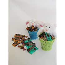 2-Pack Green & Blue Ceramic Easter Basket Planters With 2 Plush Stuffed Animals