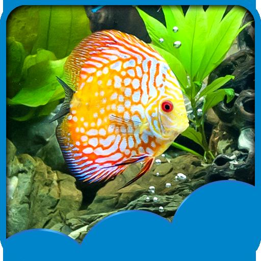 fondos-de-pantalla-de-aquarium-live