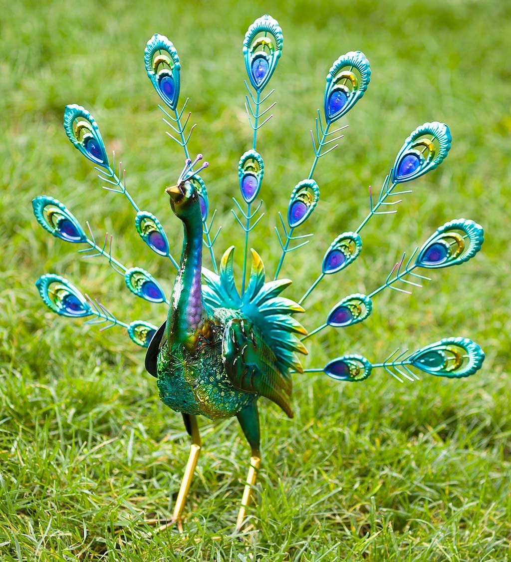 Peacock Metal Outdoor Garden Accent Sculpture with Feathers Up, 9.75 L x 6 W x 17.75 H