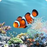 aniPet Marine Aquarium Live Wallpaper