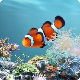 aniPet Marine Aquarium Live Wallpaper